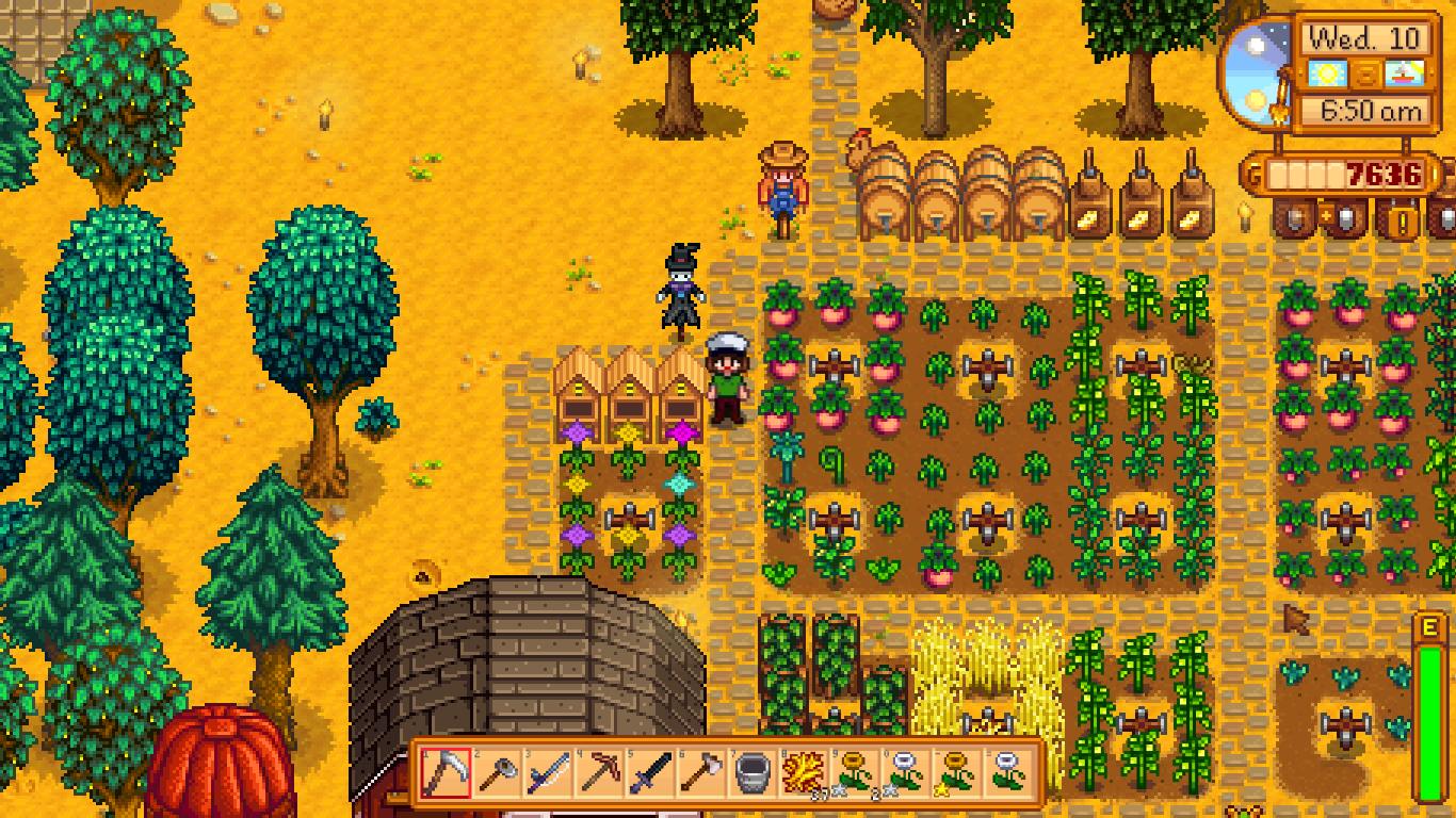 Melão, trigo, flor.